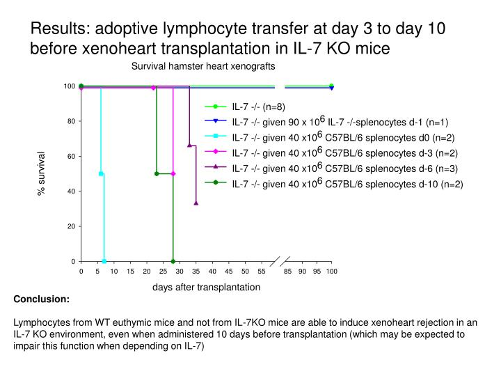 Results: adoptive lymphocyte transfer at day 3 to day 10 before xenoheart transplantation in IL-7 KO mice