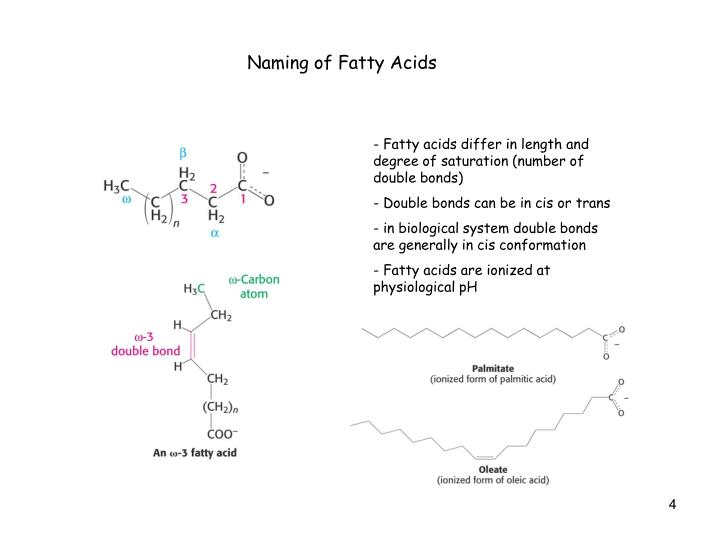Naming of Fatty Acids