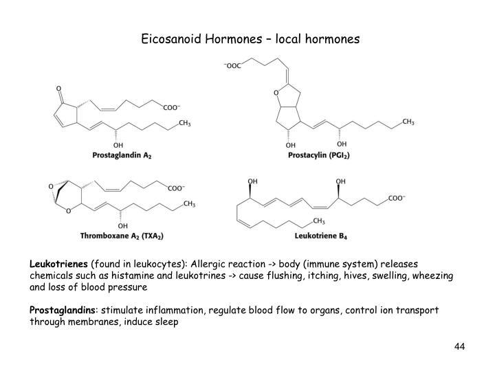 Eicosanoid Hormones – local hormones