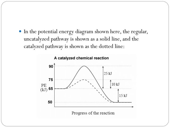 In the potential energy diagram shown here, the regular,