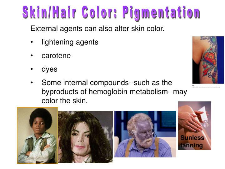 Skin/Hair Color: Pigmentation