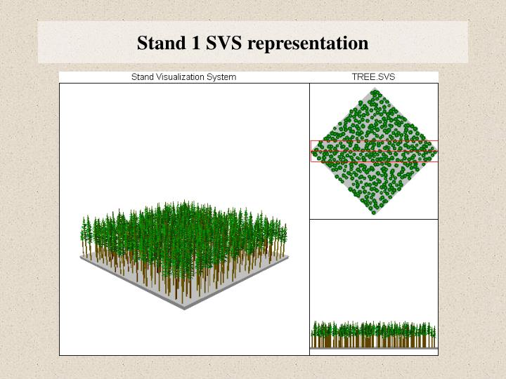 Stand 1 SVS representation