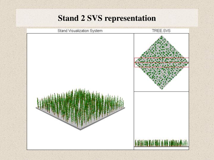 Stand 2 SVS representation
