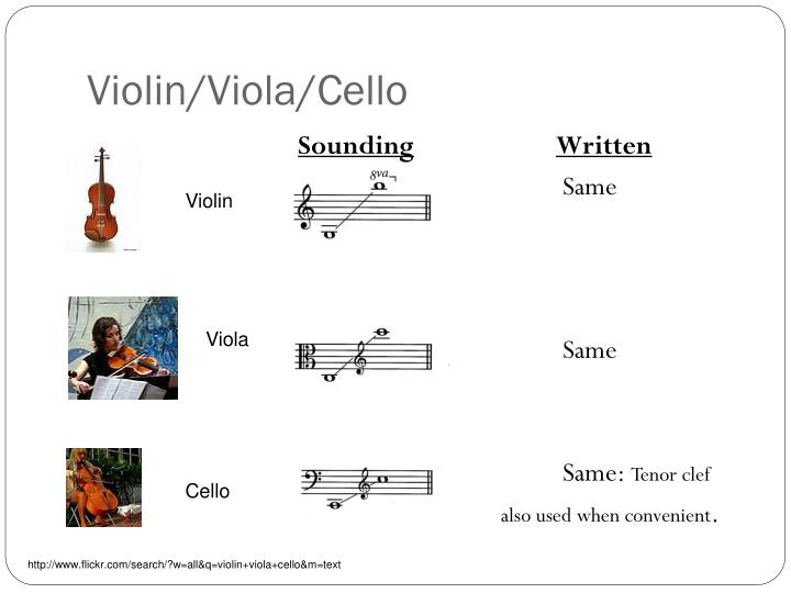 Violin/Viola/Cello