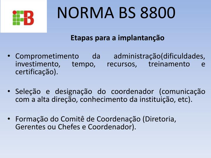 Norma bs 88001