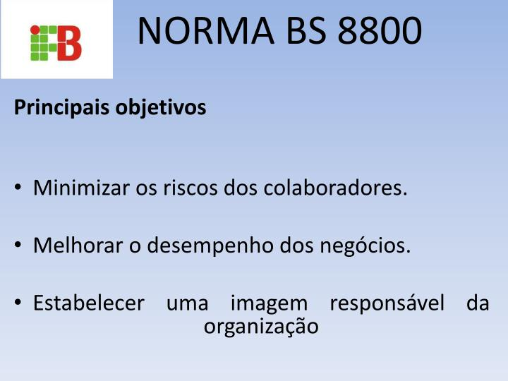 NORMA BS 8800