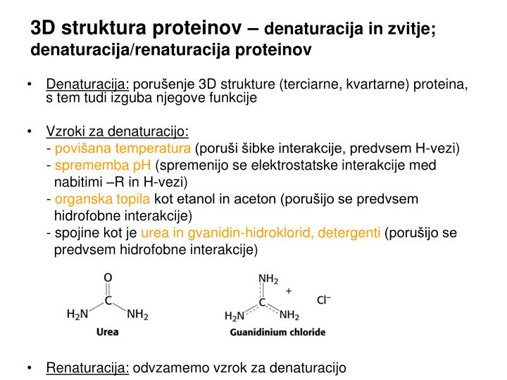 3D struktura proteinov –
