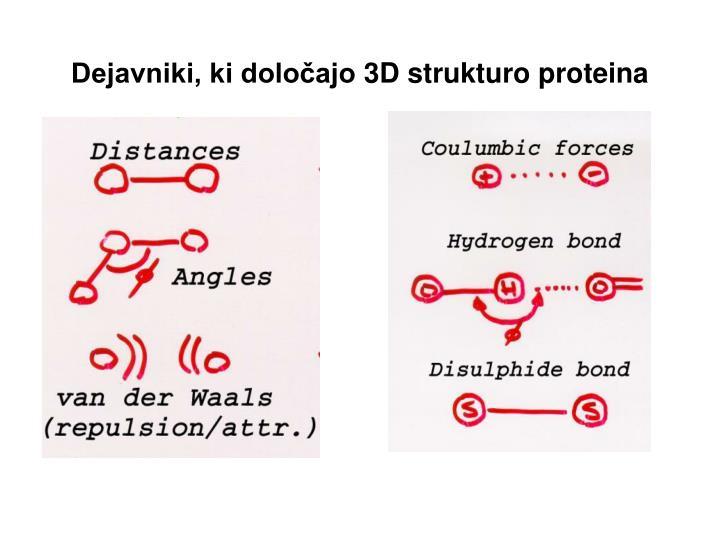 Dejavniki, ki določajo 3D strukturo proteina