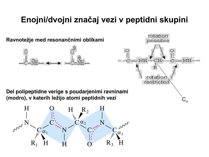 Enojni/dvojni značaj vezi v peptidni skupini