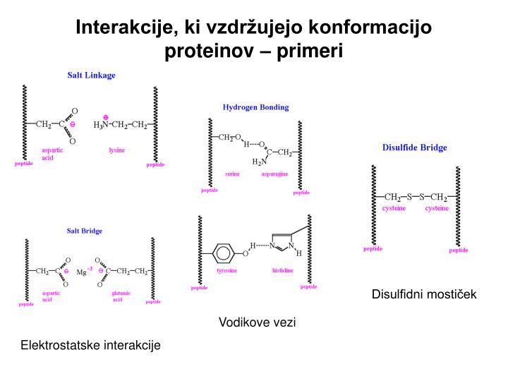 Interakcije, ki vzdržujejo konformacijo proteinov – primeri