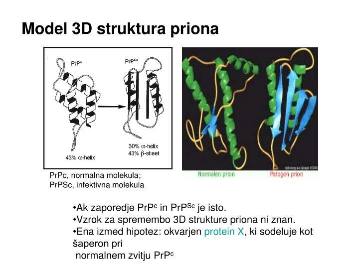 Model 3D struktura priona