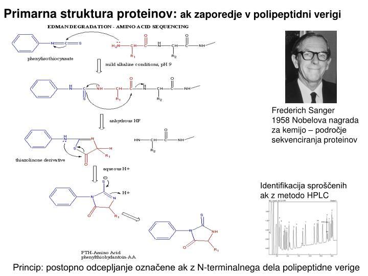 Primarna struktura proteinov: