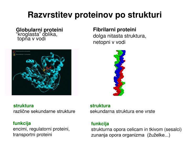 Razvrstitev proteinov po strukturi