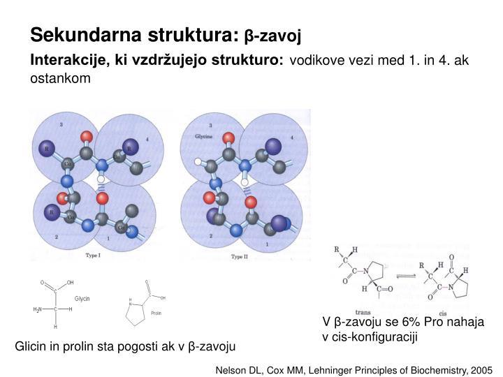 Sekundarna struktura: