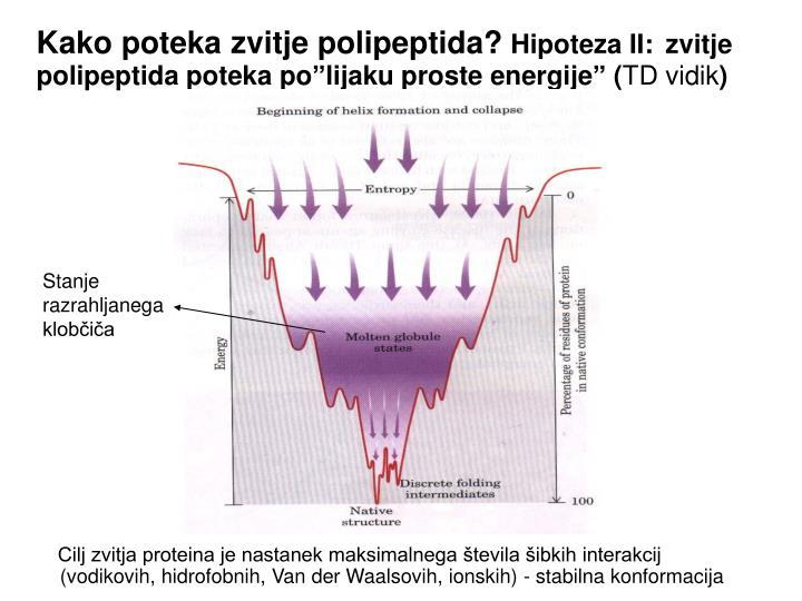 Kako poteka zvitje polipeptida?