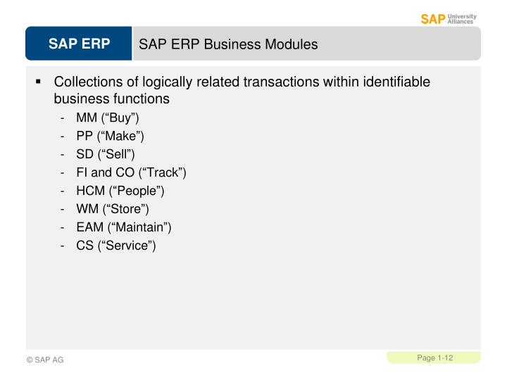 SAP ERP Business Modules