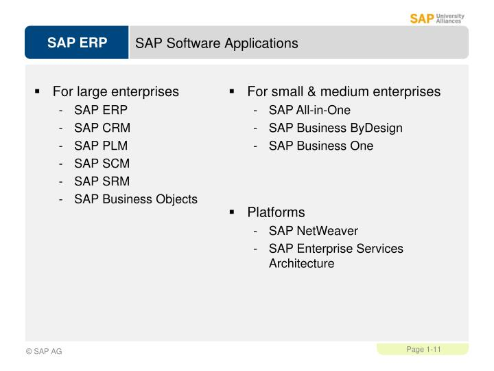 SAP Software Applications