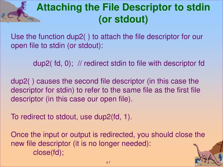 Attaching the File Descriptor to stdin (or stdout)