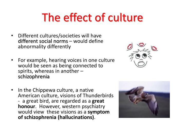 The effect of culture