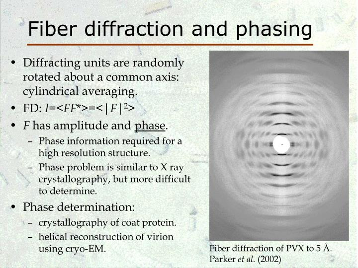 Fiber diffraction and phasing