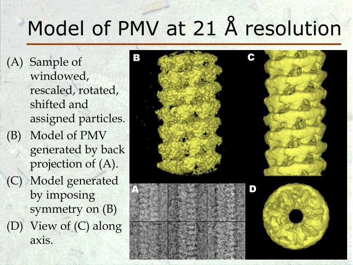 Model of PMV at 21 Å resolution