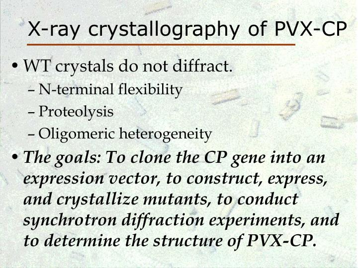 X-ray crystallography of PVX-CP