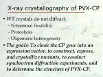 x ray crystallography of pvx cp