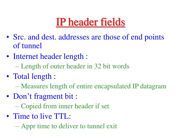 IP header fields