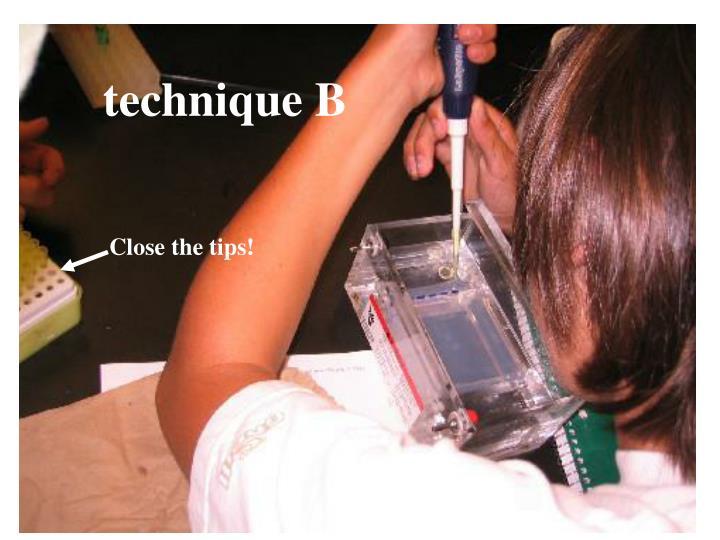 technique B