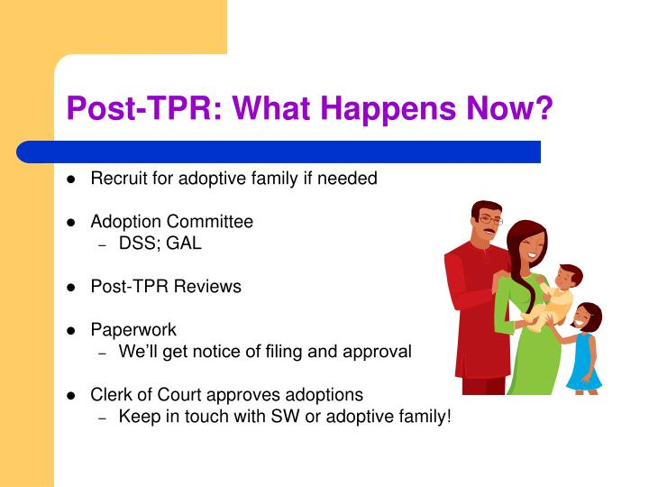 Post-TPR: What Happens Now?