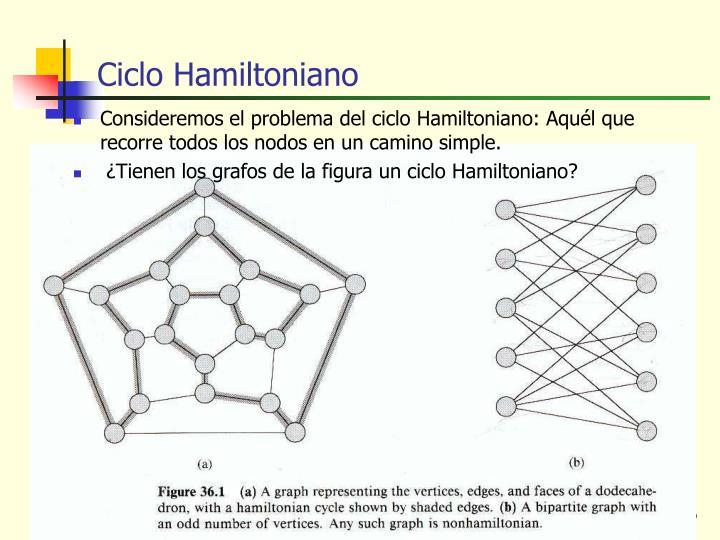 Ciclo Hamiltoniano