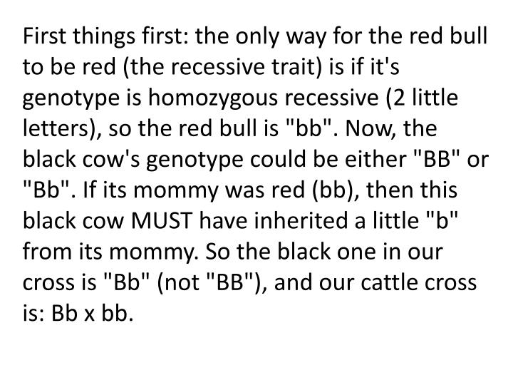 "First things first: the only way for the red bull to be red (the recessive trait) is if it's genotype is homozygous recessive (2 little letters), so the red bull is ""bb"". Now, the black cow's genotype could be either ""BB"" or ""Bb"". If its mommy was red (bb), then this black cow MUST have inherited a little ""b"" from its mommy. So the black one in our cross is ""Bb"" (not ""BB""), and our cattle cross is: Bb x bb."