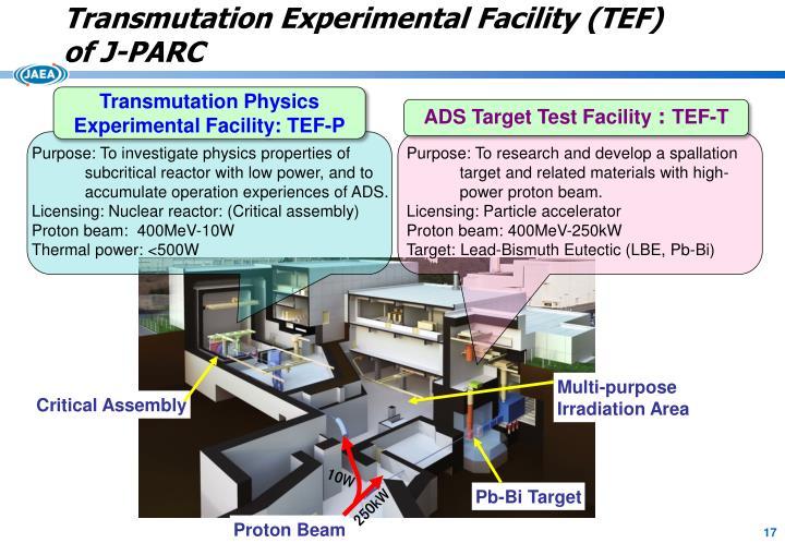 Transmutation Experimental Facility (TEF)