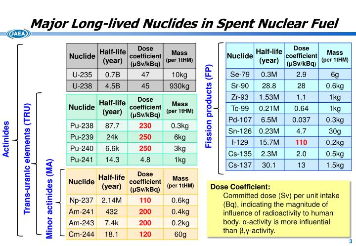 Major Long-lived Nuclides in Spent Nuclear Fuel