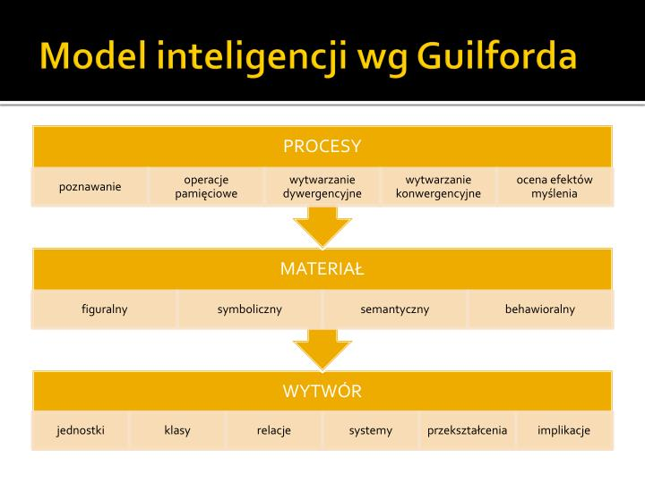 Model inteligencji wg