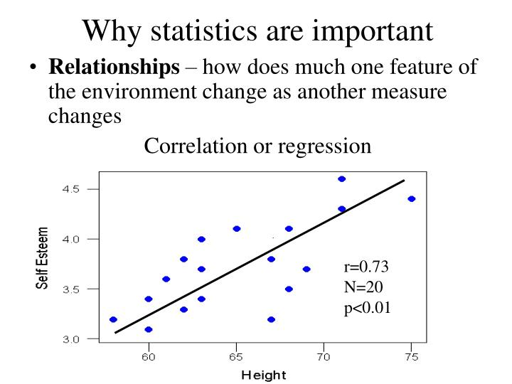 Why statistics are important