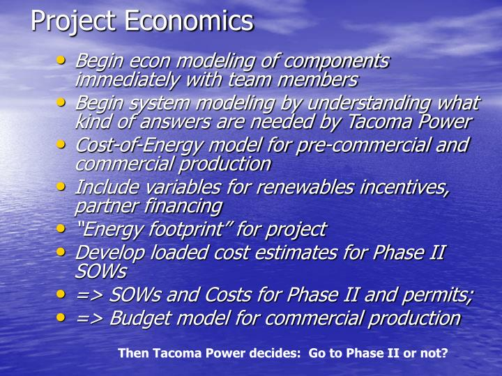 Project Economics