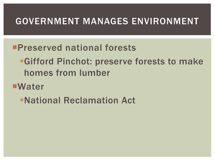 Government Manages Environment