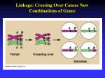 linkage crossing over causes new combinations of genes
