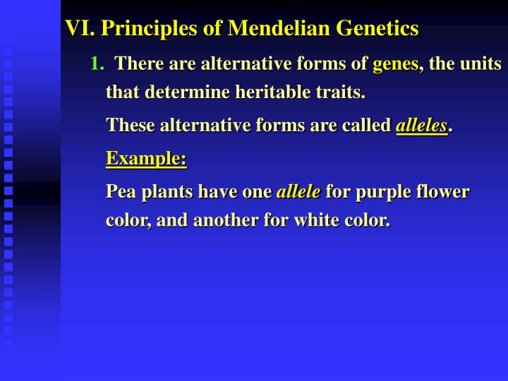 VI. Principles of Mendelian Genetics