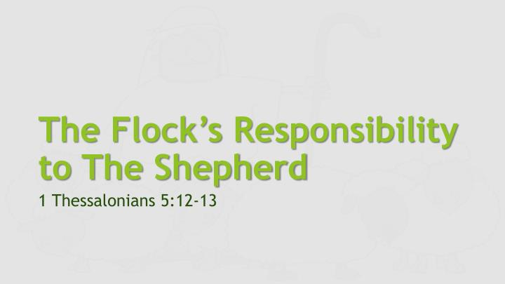 The flock s responsibility to the shepherd