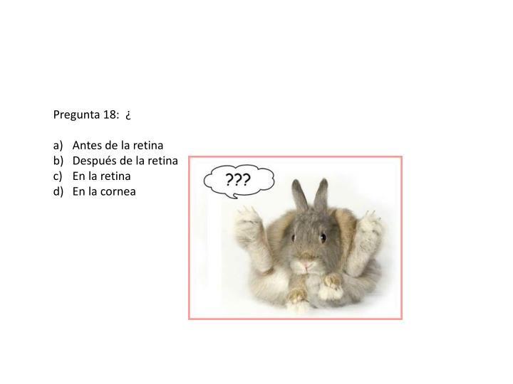 Pregunta 18:  ¿