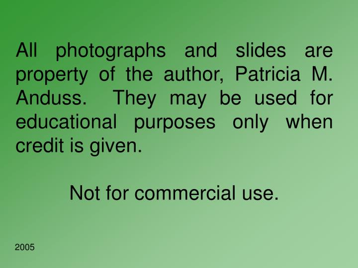 All photographs and slides are property of the author, Patricia M. Anduss.  They may be used for edu...