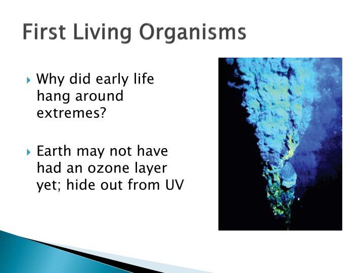 First Living Organisms