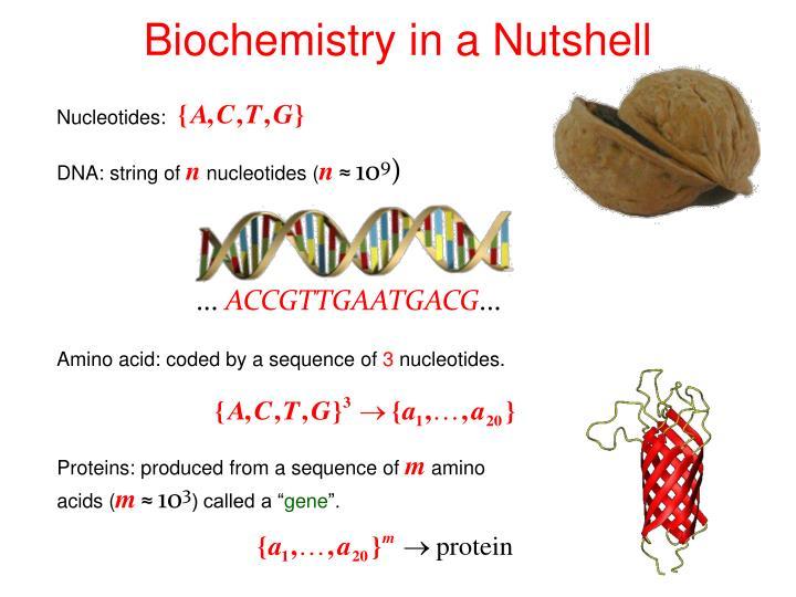 Biochemistry in a Nutshell