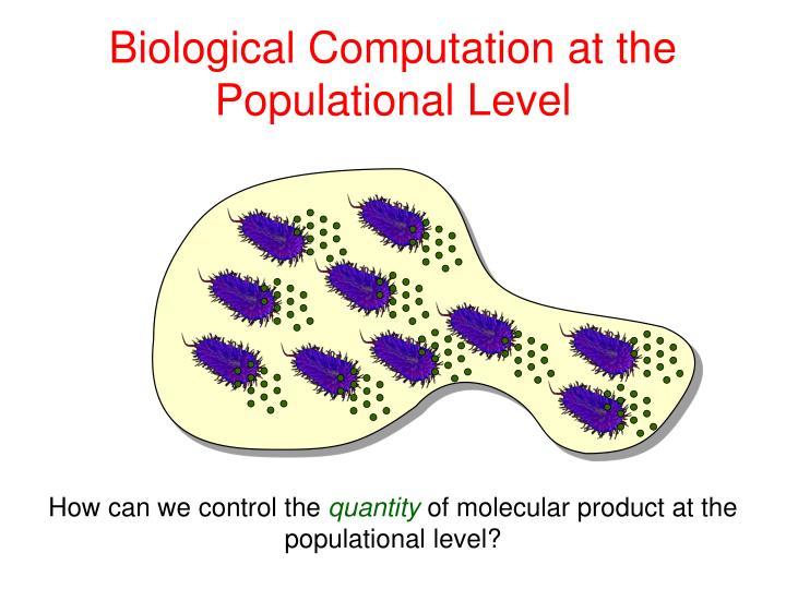Biological Computation at the Populational Level