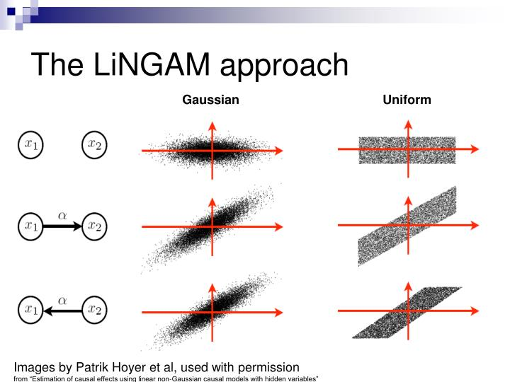 The LiNGAM approach