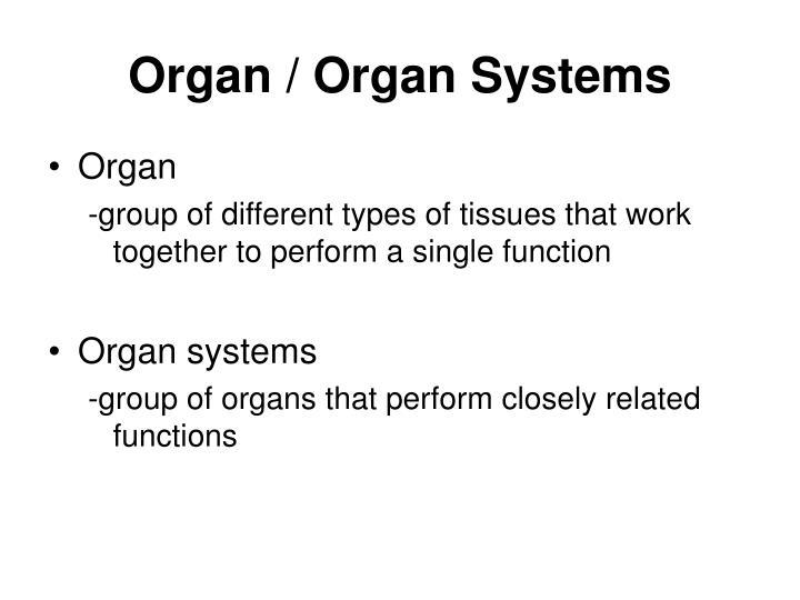 Organ / Organ Systems