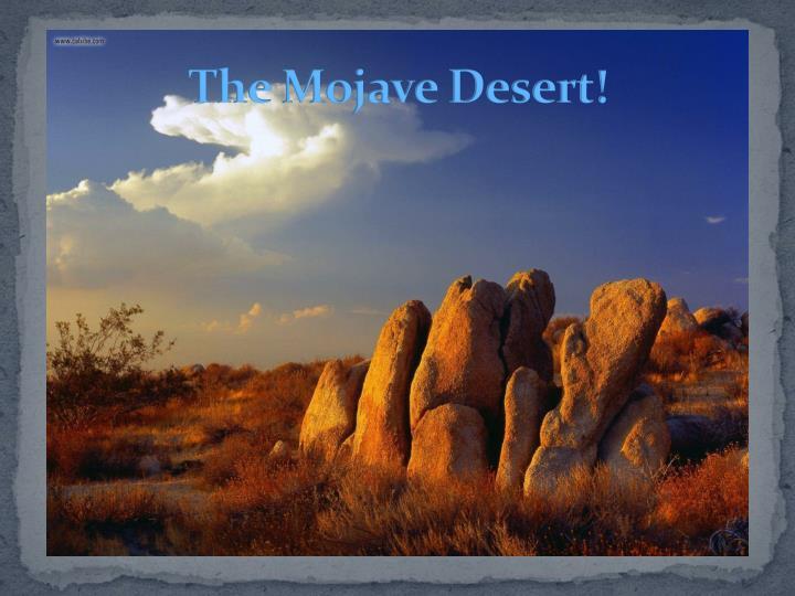 The Mojave Desert!