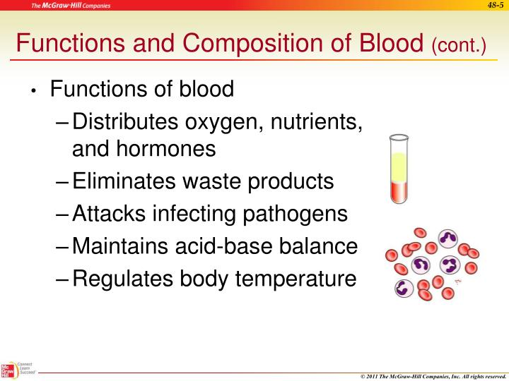 Functions and Composition of Blood